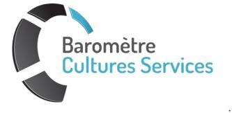 logo_culture_service.PNG