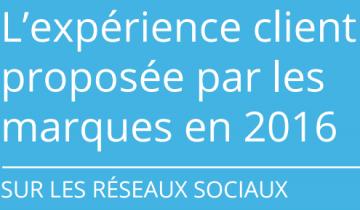 BONNET D'ÂNE POUR LES RÉSEAUX SOCIAUX EN MATIÈRE DE RELATION CLIENT